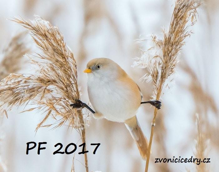 pf_2017_zc