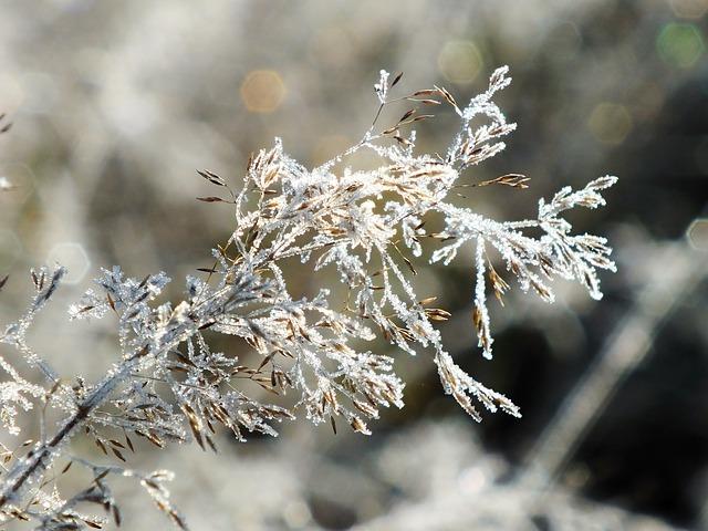 winter-1848675_640